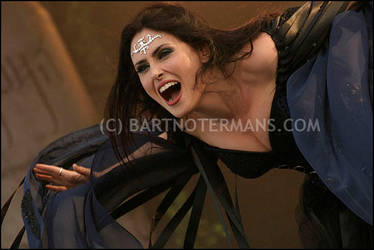 Within Temptation - Pinkpop 05 by bartje-