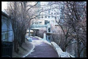 River Walkway by Artsyfrog