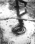 The rain by OjosVerde