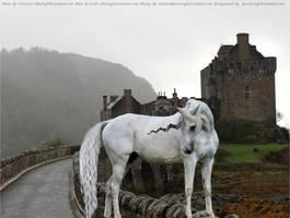 The Unicorn by tattooedfarrier