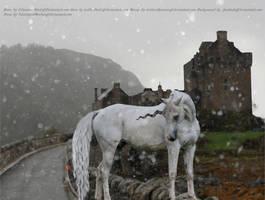 The Unicorn 2 by tattooedfarrier