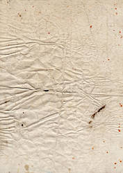 Grungy paper texture v.11 by bashcorpo