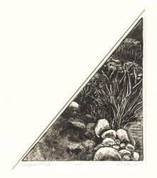 Fragments IV by kmakowsky