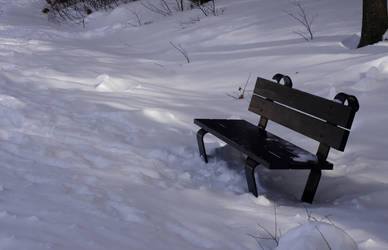 Just a Bench by avatare