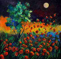 Poppies 774111 by pledent