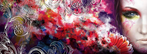 facebook fanpage cover art by AnetaChalimoniuk