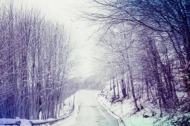 White Winter Hymnal by LuizaLazar