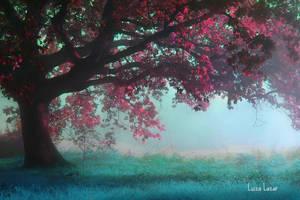 Dream yourself away by LuizaLazar