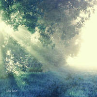 send angels by LuizaLazar