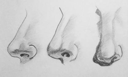 Noses Concentration by ArtByJulia