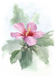 flowerr by ayjaja