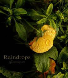 Raindrops by creativemikey