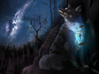 Starry night by Muns11