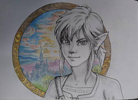 Breath of the wild, Link  by missr00t