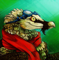 Bearded Vulture Portrait by Puppy-Chow