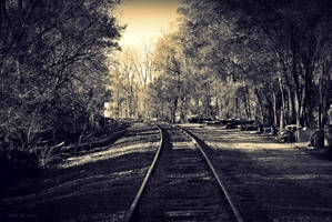abandoned  rail spur by SMT-Images