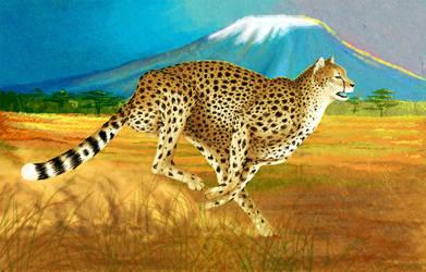 Run cheetah Run by Arthadel