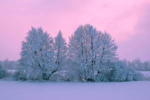 Winter time by andrejbujna