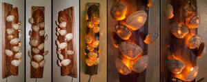 Shell Wall Light by Steampunked-Out