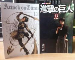 Mange vs Anime Custom Cover vol. 13 by xXBeatoUshiromiyaXx