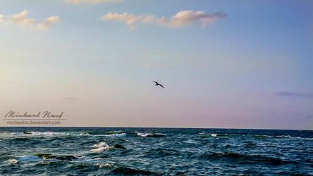 Flying Away by MichaelNN