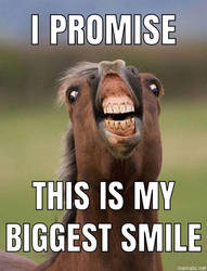 Horse Smile by XxCrashPandaxX