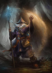 Wizard by gerezon