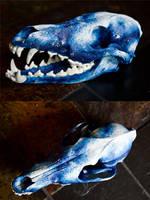 Sky Coyote Skull by Samishii-Kami