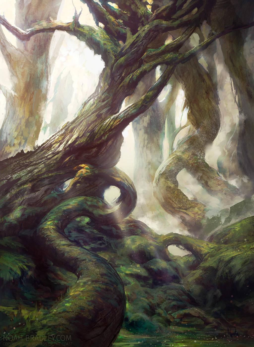 Forest by noahbradley