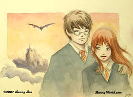 Harry and Hermione by LannySu