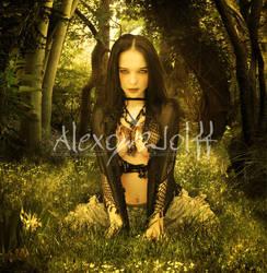 El conjuro de la bruja Fey by alexowolff