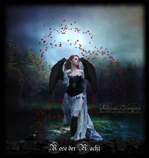 Rose der Nacht by Endorell-Taelos