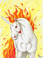 Rapidash by algy