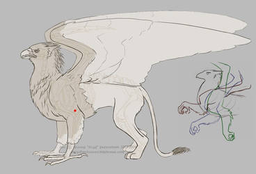 Gryphon Physiology 02 by algy