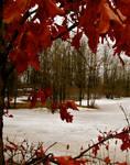 Spring Through Fall by flufflestehleemerman