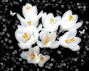 Winter flowers by davincimelancholy