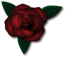 Rose by KarynRH