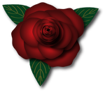 Lighter Rose by KarynRH