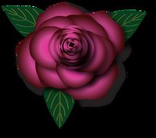 Pink Rose by KarynRH
