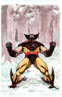 Wolverine by RAHeight2002-2012