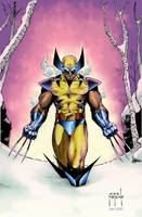Wolverine by JMan_3H-colors by Absalom7