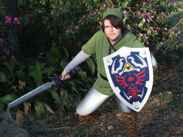 Link Cosplay 2 by linkinspirit95