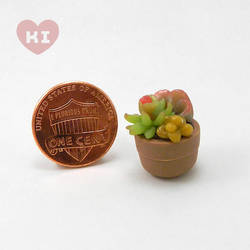Miniature Potted Succulent 2 by meropepa