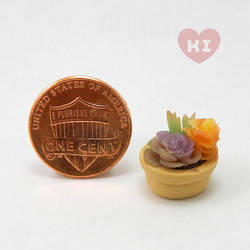 Miniature Potted Succulent 5 by meropepa