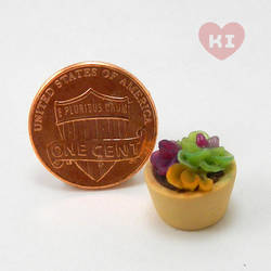 Miniature Potted Succulent 6 by meropepa