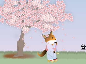 Wallpaper: Cherry Blossoms by lordbatsy
