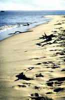 Footprints by elspeth-9