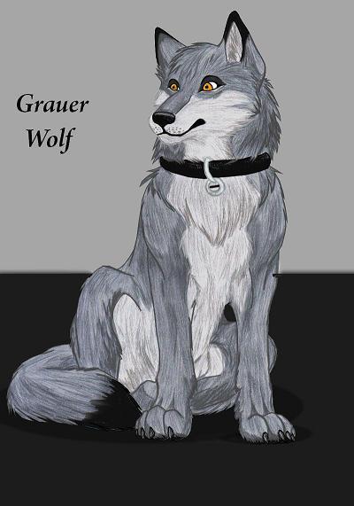 GrauerWolf's Profile Picture