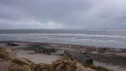 Danmark Calling by GrauerWolf