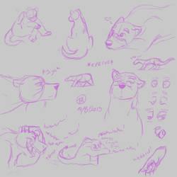 Fursona Doodles by FroFro567